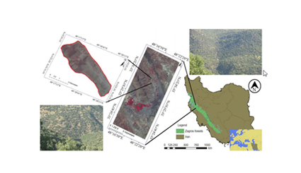 Distribution changes of woody plants in Western Iran as monitored by remote sensing and geographical information system: a case study of Zagros forest